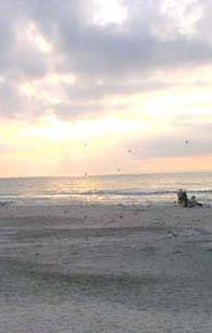 Beach at Captiva Island Vacation Rentals