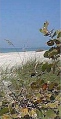 Captiva Vacation Rentals